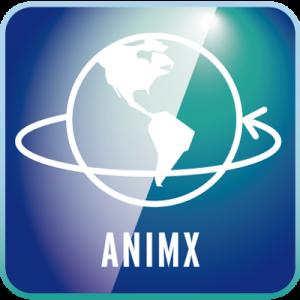 macrosystem-AnimX-win