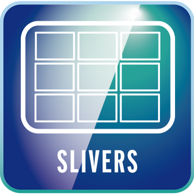macrosystem-Slivers-win
